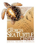 Georgia Sea Turtle Center!